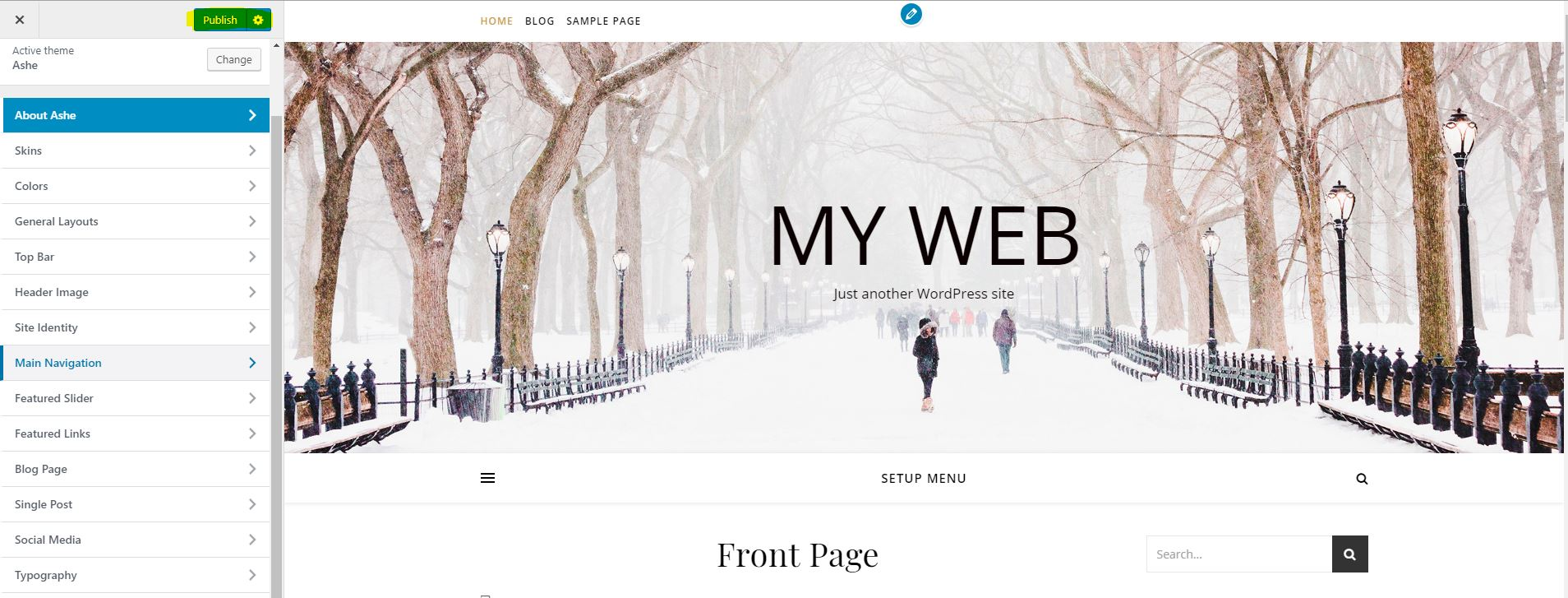 Publish WordPress Theme
